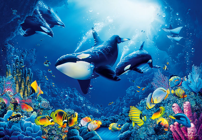 Ocean Wall Mural photo wallpaper killer whale orca wall mural 366x254cm blue sea